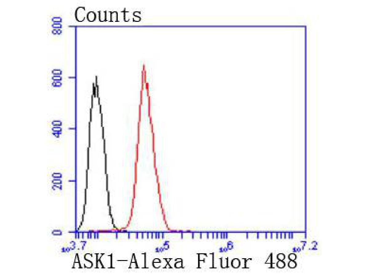 Flow cytometric analysis of ASK1 was done on Hela cells. The cells were fixed, permeabilized and stained with the primary antibody (ET1608-54, 1/50) (red). After incubation of the primary antibody at room temperature for an hour, the cells were stained with a Alexa Fluor 488-conjugated Goat anti-Rabbit IgG Secondary antibody at 1/1000 dilution for 30 minutes.Unlabelled sample was used as a control (cells without incubation with primary antibody; black).