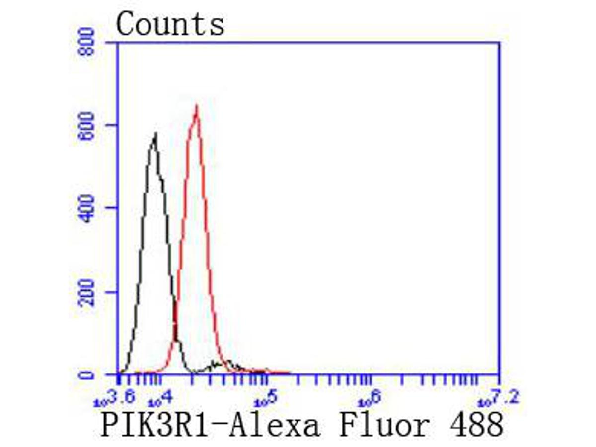 Flow cytometric analysis of HepG2 cells with PI 3 Kinase p85 alpha antibody at 1/50 dilution (red) compared with an unlabelled control (cells without incubation with primary antibody; black). Alexa Fluor 488-conjugated goat anti rabbit IgG was used as the secondary antibody