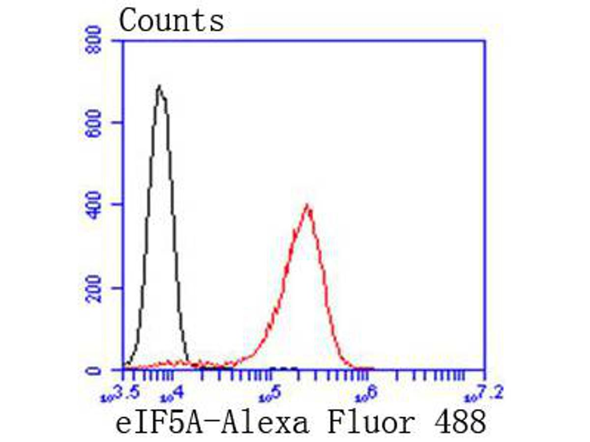Flow cytometric analysis of eIF5A was done on Jurkat cells. The cells were fixed, permeabilized and stained with the primary antibody (ET1610-49, 1/50) (red). After incubation of the primary antibody at room temperature for an hour, the cells were stained with a Alexa Fluor 488-conjugated Goat anti-Rabbit IgG Secondary antibody at 1/1000 dilution for 30 minutes.Unlabelled sample was used as a control (cells without incubation with primary antibody; black).