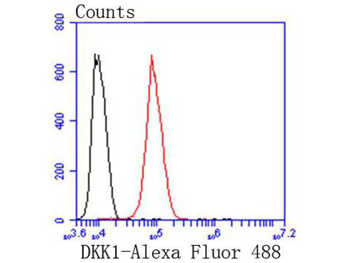 Flow cytometric analysis of DKK1 was done on Hela cells. The cells were fixed, permeabilized and stained with the primary antibody (ET1610-63, 1/50) (red). After incubation of the primary antibody at room temperature for an hour, the cells were stained with a Alexa Fluor 488-conjugated Goat anti-Rabbit IgG Secondary antibody at 1/1000 dilution for 30 minutes.Unlabelled sample was used as a control (cells without incubation with primary antibody; black).