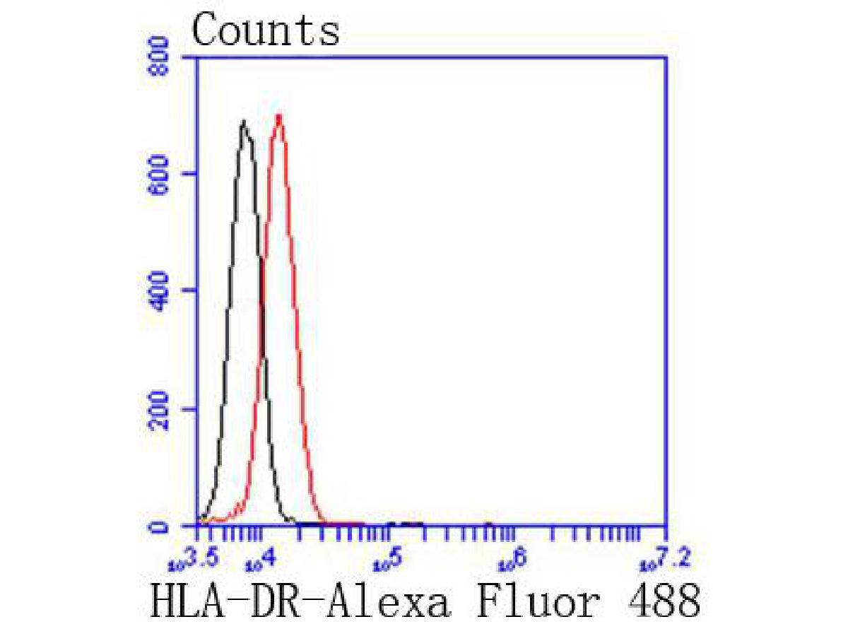Flow cytometric analysis of HLA-DR was done on Jurkat cells. The cells were fixed, permeabilized and stained with the primary antibody (ET1610-66, 1/50) (red). After incubation of the primary antibody at room temperature for an hour, the cells were stained with a Alexa Fluor 488-conjugated Goat anti-Rabbit IgG Secondary antibody at 1/1000 dilution for 30 minutes.Unlabelled sample was used as a control (cells without incubation with primary antibody; black).