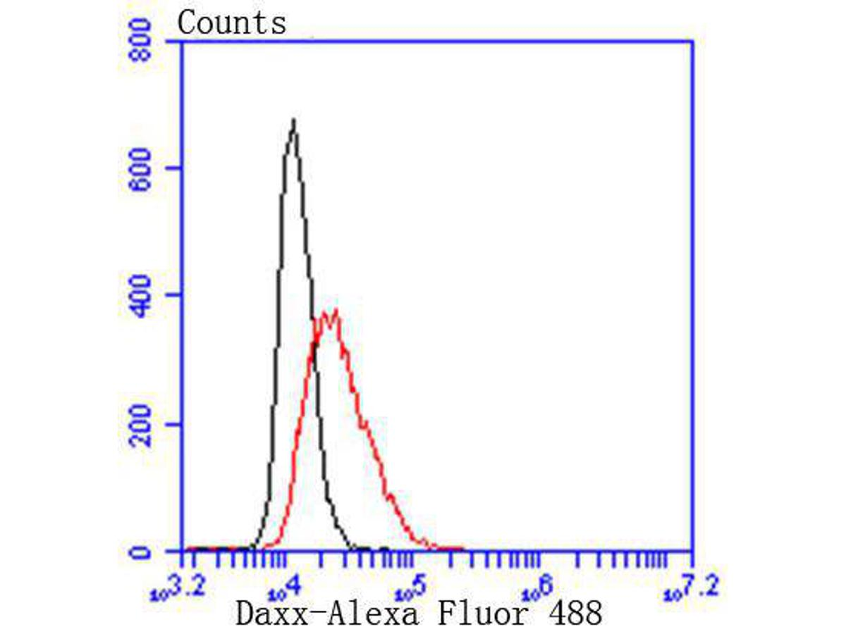 Flow cytometric analysis of Hela cells with Daxx antibody at 1/50 dilution (red) compared with an unlabelled control (cells without incubation with primary antibody; black). Alexa Fluor 488-conjugated goat anti rabbit IgG was used as the secondary antibody