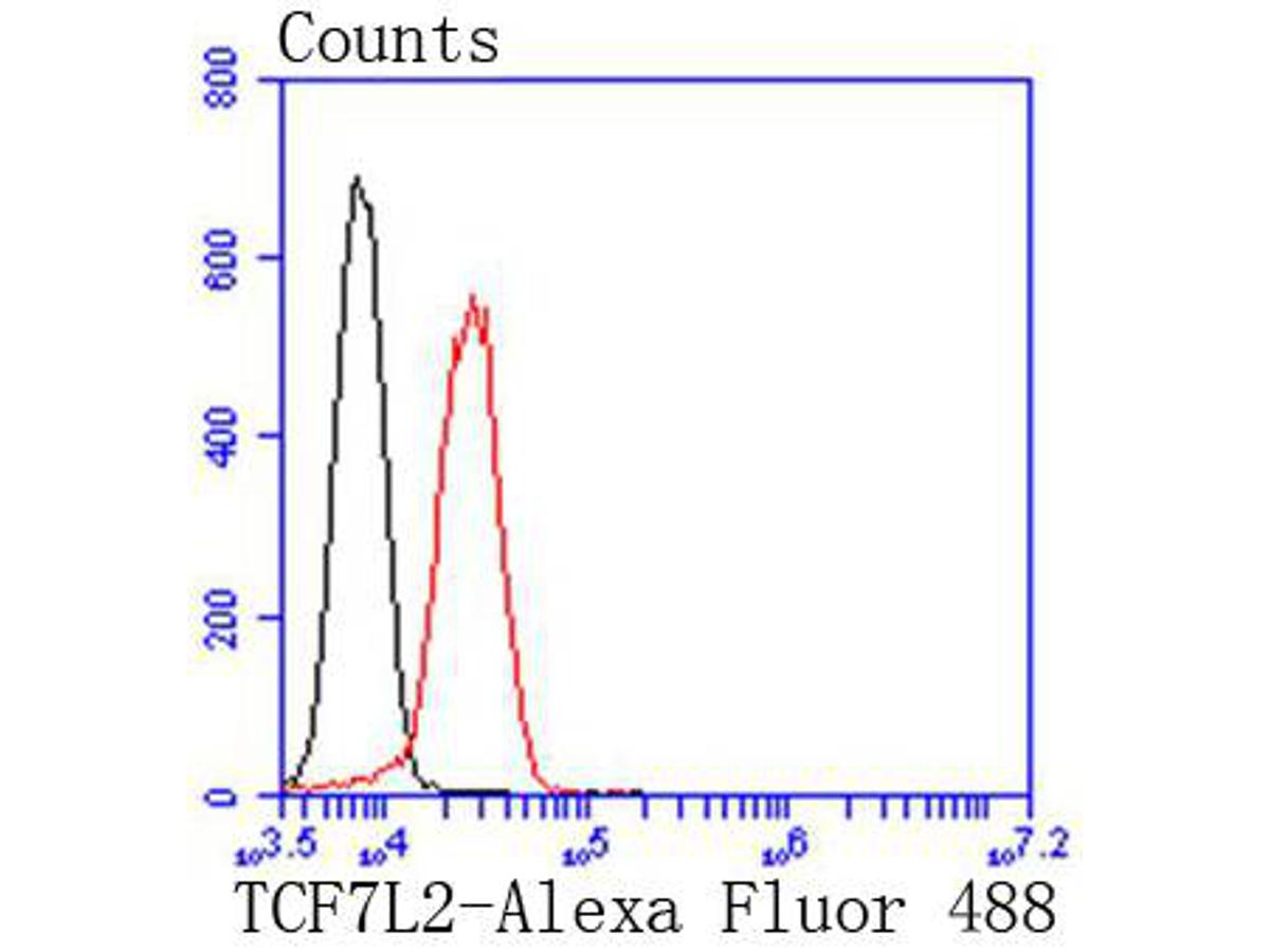Flow cytometric analysis of Jurkat cells with TCF7L2 antibody at 1/50 dilution (red) compared with an unlabelled control (cells without incubation with primary antibody; black). Alexa Fluor 488-conjugated goat anti rabbit IgG was used as the secondary antibody.