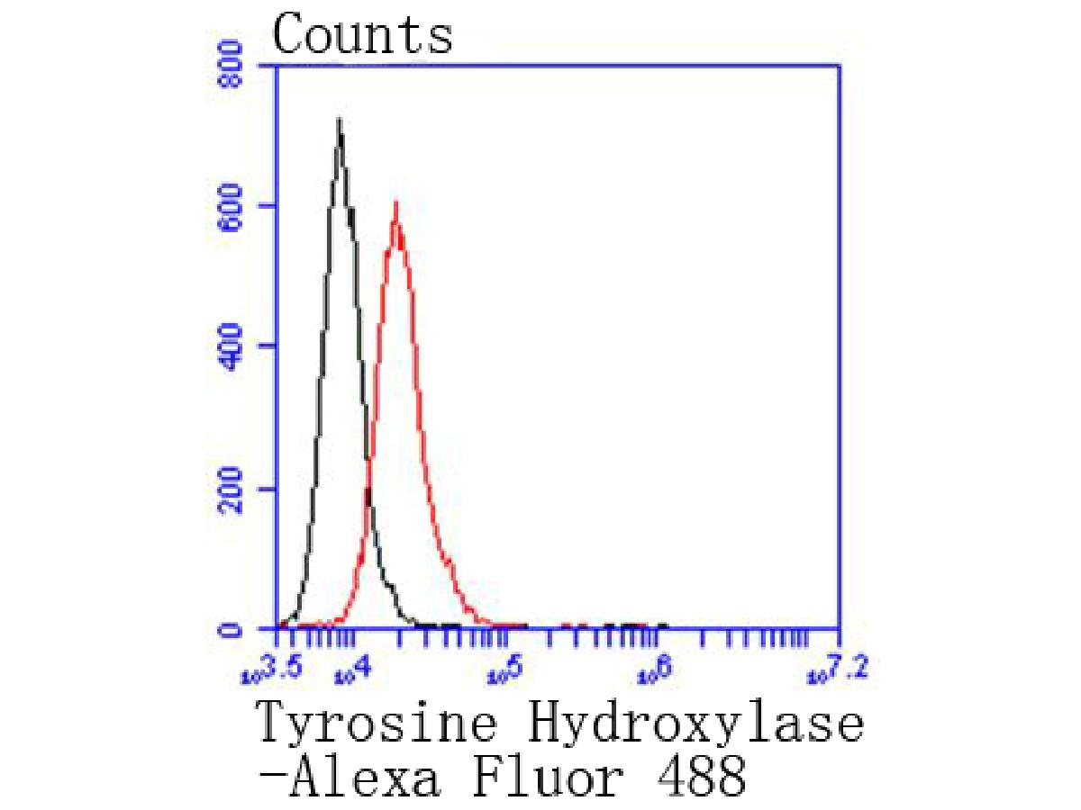 Flow cytometric analysis of Tyrosine Hydroxylase was done on N2A cells. The cells were fixed, permeabilized and stained with the primary antibody (ET1611-12, 1/50) (red). After incubation of the primary antibody at room temperature for an hour, the cells were stained with a Alexa Fluor 488-conjugated Goat anti-Rabbit IgG Secondary antibody at 1/1000 dilution for 30 minutes.Unlabelled sample was used as a control (cells without incubation with primary antibody; black).
