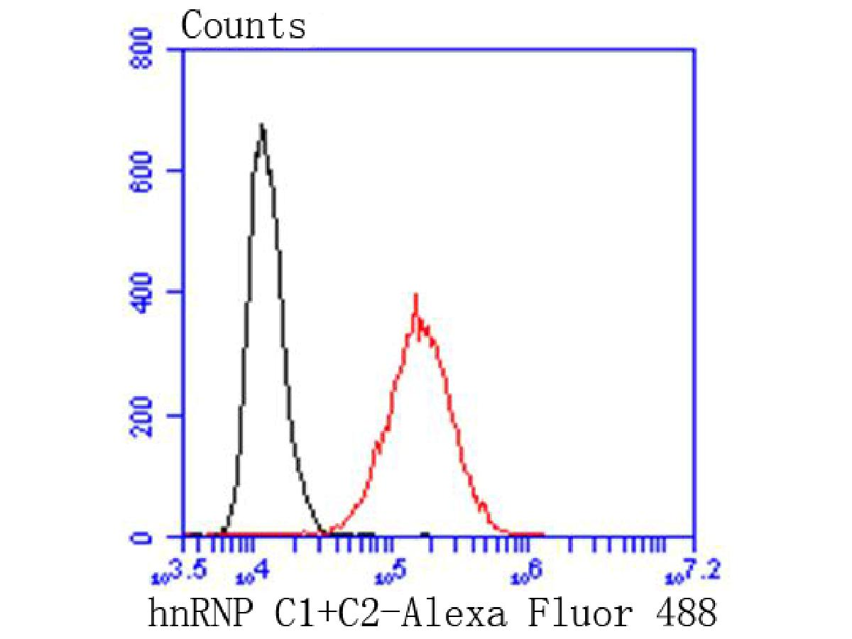 Flow cytometric analysis of Hela cells with hnRNP C1+C2 antibody at 1/50 dilution (red) compared with an unlabelled control (cells without incubation with primary antibody; black). Alexa Fluor 488-conjugated goat anti rabbit IgG was used as the secondary antibody