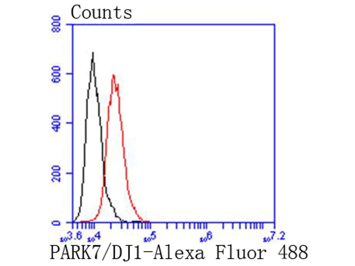 Flow cytometric analysis of PARK7/DJ1 was done on HepG2 cells. The cells were fixed, permeabilized and stained with the primary antibody (ET1611-45, 1/50) (red). After incubation of the primary antibody at room temperature for an hour, the cells were stained with a Alexa Fluor 488-conjugated Goat anti-Rabbit IgG Secondary antibody at 1/1000 dilution for 30 minutes.Unlabelled sample was used as a control (cells without incubation with primary antibody; black).