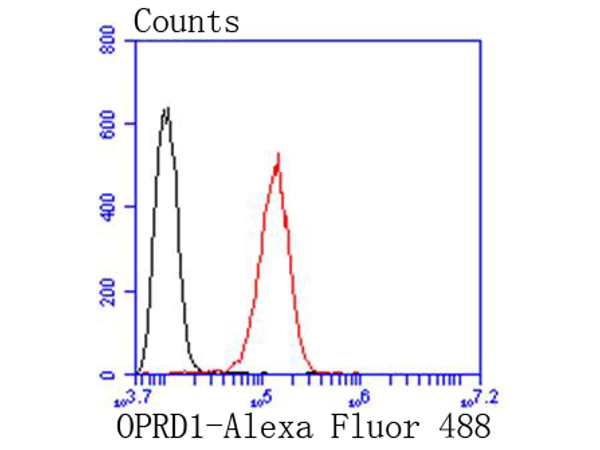 Flow cytometric analysis of SH-SY-5Y cells with OPRD1 antibody at 1/50 dilution (red) compared with an unlabelled control (cells without incubation with primary antibody; black). Alexa Fluor 488-conjugated goat anti rabbit IgG was used as the secondary antibody