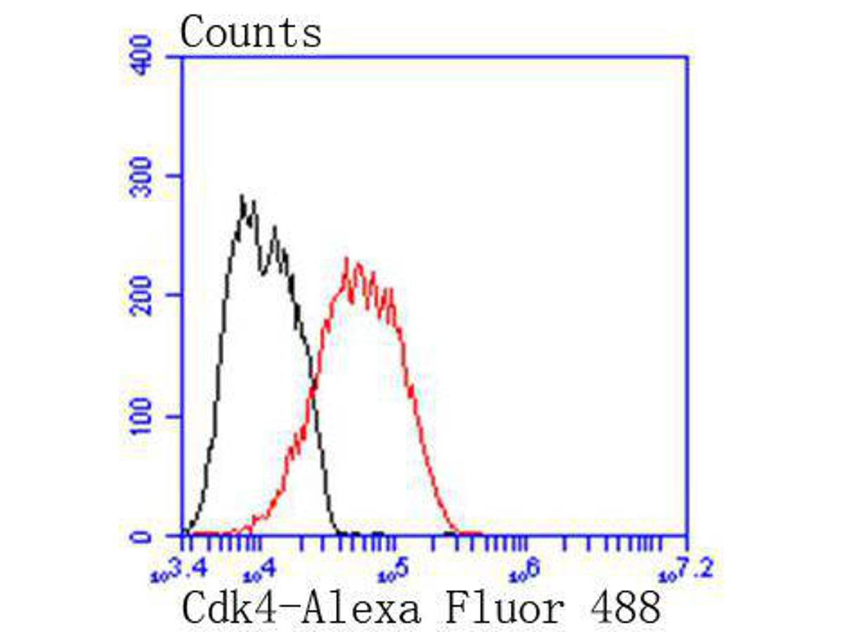 Flow cytometric analysis of MCF-7 cells with Cdk4 antibody at 1/50 dilution (red) compared with an unlabelled control (cells without incubation with primary antibody; black). Alexa Fluor 488-conjugated goat anti rabbit IgG was used as the secondary antibody.