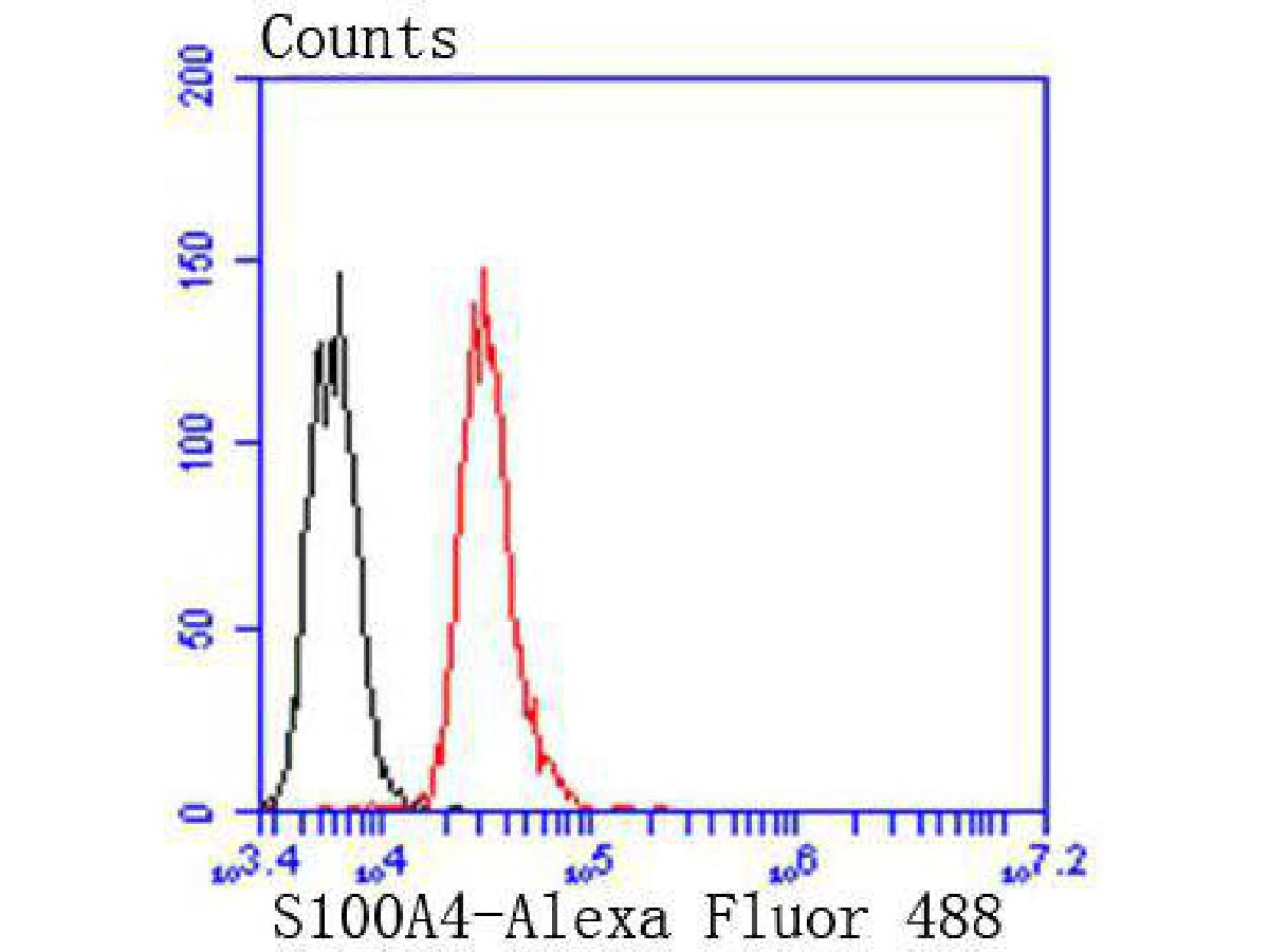 Flow cytometric analysis of S100A4 was done on Jurkat cells. The cells were fixed, permeabilized and stained with the primary antibody (ET1612-13, 1/50) (red). After incubation of the primary antibody at room temperature for an hour, the cells were stained with a Alexa Fluor 488-conjugated Goat anti-Rabbit IgG Secondary antibody at 1/1000 dilution for 30 minutes.Unlabelled sample was used as a control (cells without incubation with primary antibody; black).