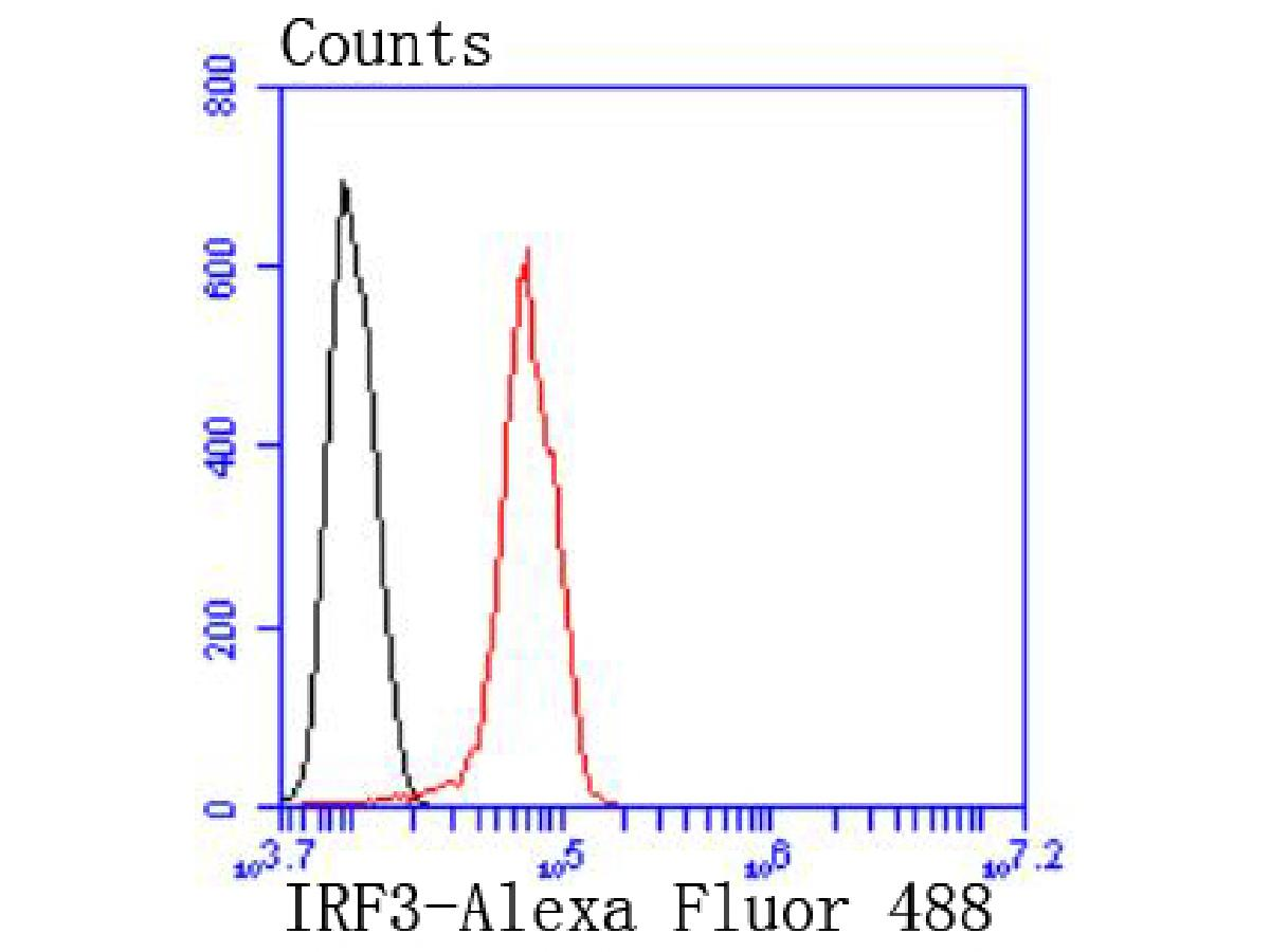 Flow cytometric analysis of IRF3 was done on Hela cells. The cells were fixed, permeabilized and stained with the primary antibody (ET1612-14, 1/50) (red). After incubation of the primary antibody at room temperature for an hour, the cells were stained with a Alexa Fluor 488-conjugated Goat anti-Rabbit IgG Secondary antibody at 1/1000 dilution for 30 minutes.Unlabelled sample was used as a control (cells without incubation with primary antibody; black).