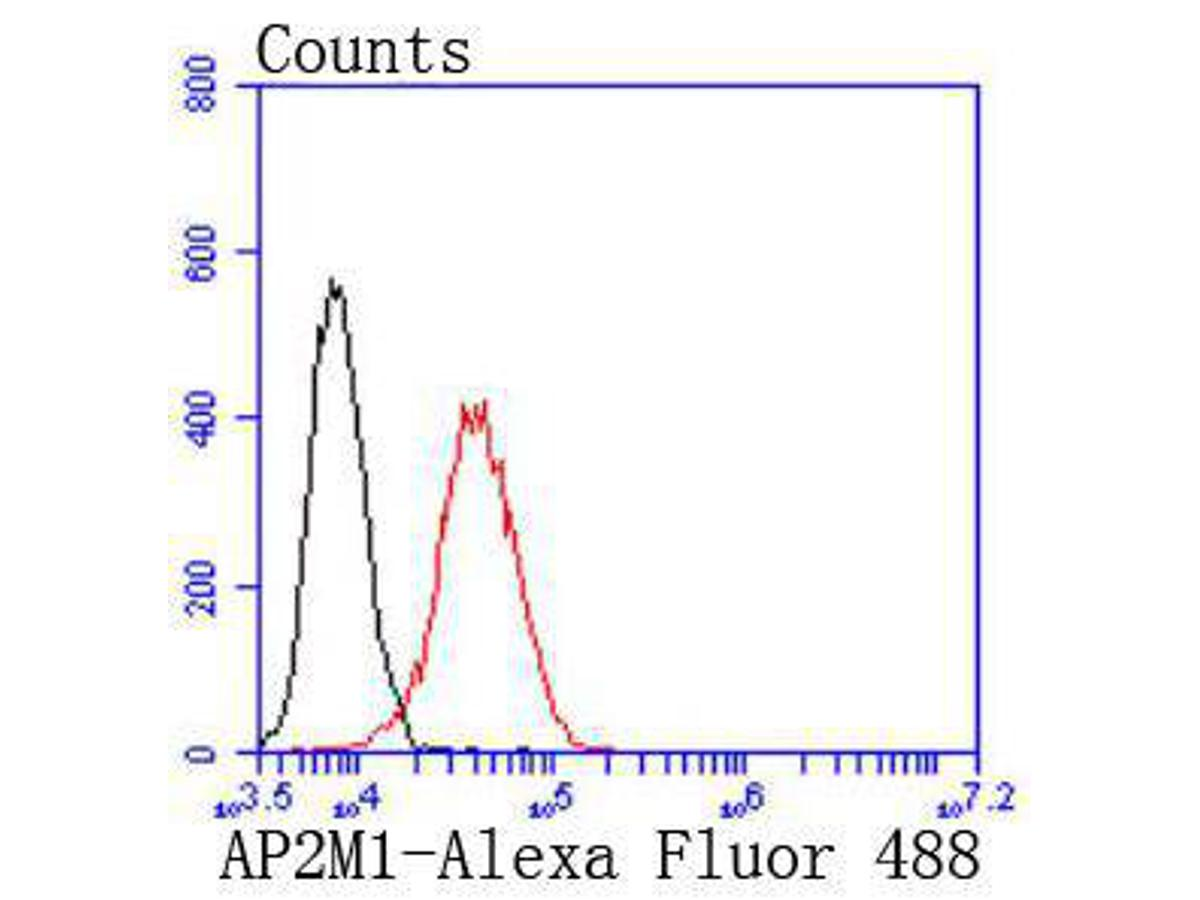 Flow cytometric analysis of AP2M1 was done on PANC-1 cells. The cells were fixed, permeabilized and stained with the primary antibody (ET1612-33, 1/50) (red). After incubation of the primary antibody at room temperature for an hour, the cells were stained with a Alexa Fluor 488-conjugated Goat anti-Rabbit IgG Secondary antibody at 1/1000 dilution for 30 minutes.Unlabelled sample was used as a control (cells without incubation with primary antibody; black).