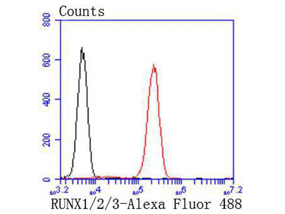 Flow cytometric analysis of Jurkat cells with RUNX1+RUNX2+RUNX3 antibody at 1/50 dilution (red) compared with an unlabelled control (cells without incubation with primary antibody; black). Alexa Fluor 488-conjugated goat anti rabbit IgG was used as the secondary antibody.