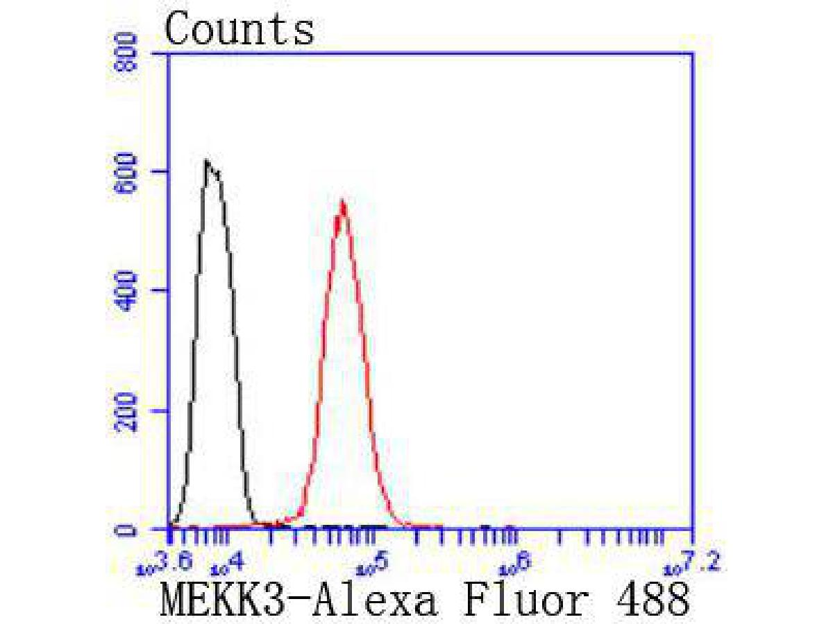 Flow cytometric analysis of Hela cells with MEKK3 antibody at 1/50 dilution (red) compared with an unlabelled control (cells without incubation with primary antibody; black). Alexa Fluor 488-conjugated goat anti rabbit IgG was used as the secondary antibody.
