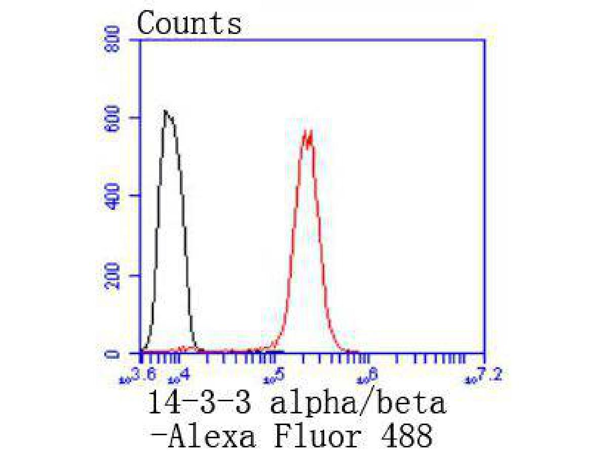 Flow cytometric analysis of 14-3-3 alpha+beta was done on Hela cells. The cells were fixed, permeabilized and stained with the primary antibody (ET1612-99, 1/50) (red). After incubation of the primary antibody at room temperature for an hour, the cells were stained with a Alexa Fluor 488-conjugated Goat anti-Rabbit IgG Secondary antibody at 1/1000 dilution for 30 minutes.Unlabelled sample was used as a control (cells without incubation with primary antibody; black).