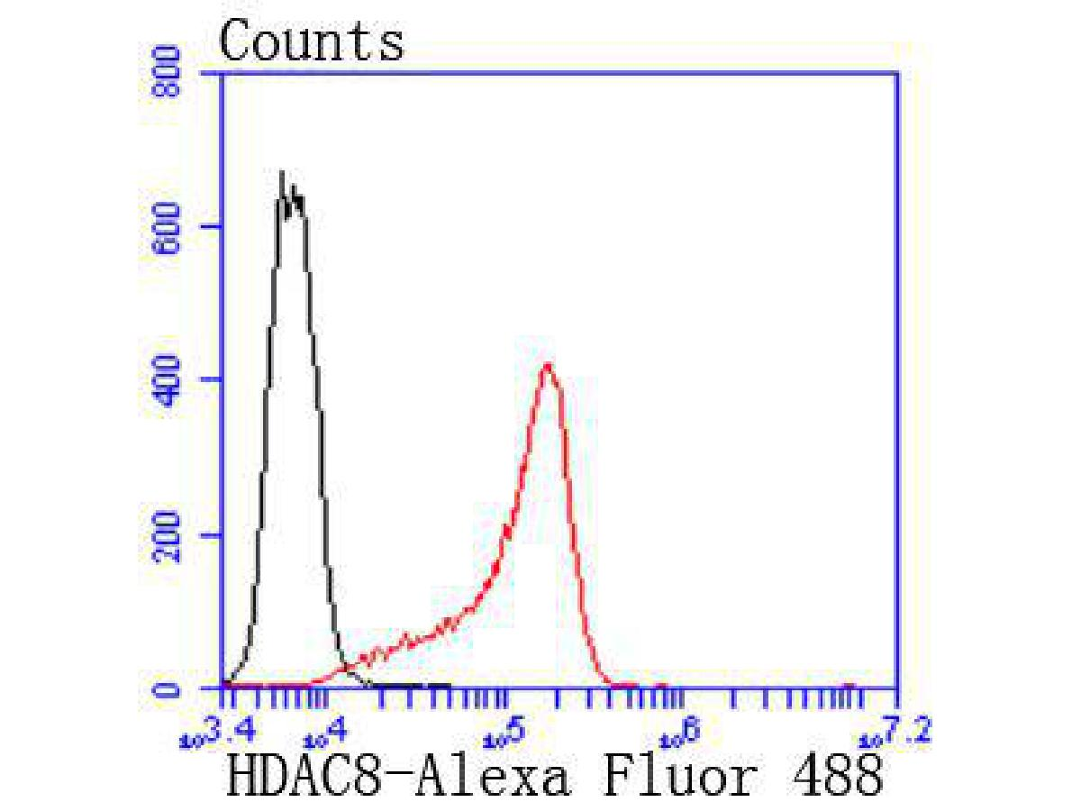 Flow cytometric analysis of K562 cells with HDAC8 antibody at 1/50 dilution (red) compared with an unlabelled control (cells without incubation with primary antibody; black). Alexa Fluor 488-conjugated goat anti rabbit IgG was used as the secondary antibody.
