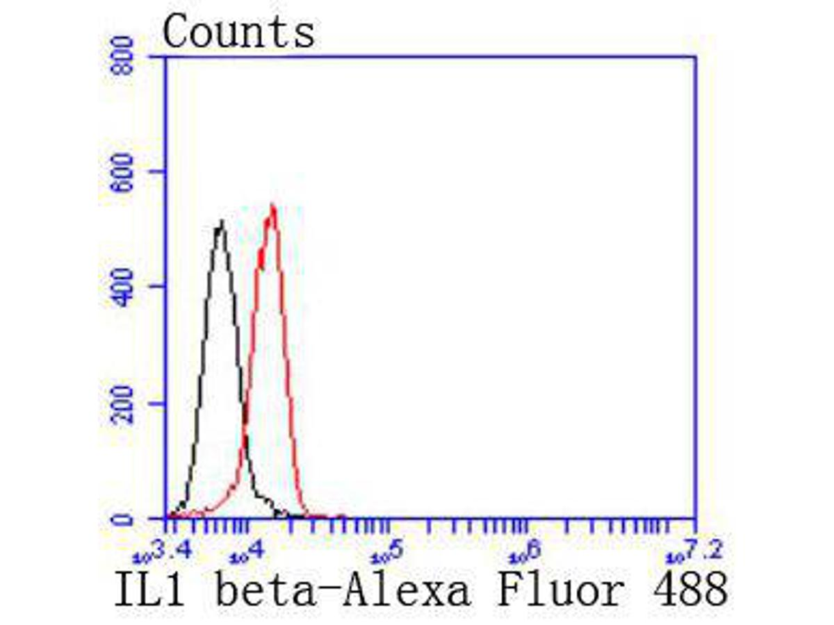 Flow cytometric analysis of IL1 beta was done on Hela cells. The cells were fixed, permeabilized and stained with the primary antibody (ET1701-39, 1/50) (red). After incubation of the primary antibody at room temperature for an hour, the cells were stained with a Alexa Fluor 488-conjugated Goat anti-Rabbit IgG Secondary antibody at 1/1000 dilution for 30 minutes.Unlabelled sample was used as a control (cells without incubation with primary antibody; black).