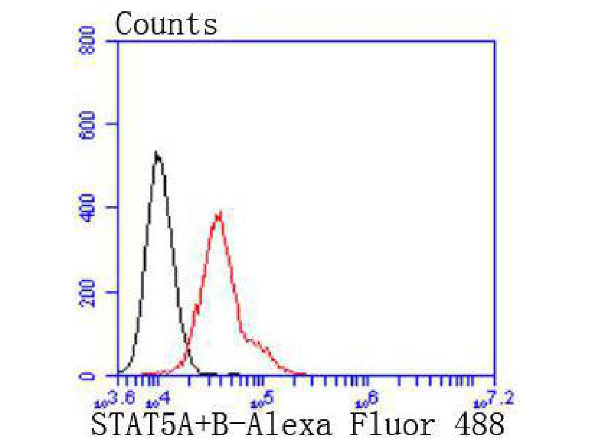 Flow cytometric analysis of NIH/3T3 cells with STAT5A+B antibody at 1/50 dilution (red) compared with an unlabelled control (cells without incubation with primary antibody; black). Alexa Fluor 488-conjugated goat anti rabbit IgG was used as the secondary antibody.