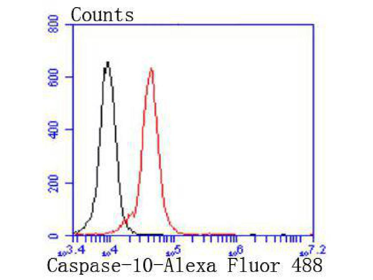 Flow cytometric analysis of K562 cells with Caspase-10 antibody at 1/50 dilution (red) compared with an unlabelled control (cells without incubation with primary antibody; black). Alexa Fluor 488-conjugated goat anti rabbit IgG was used as the secondary antibody