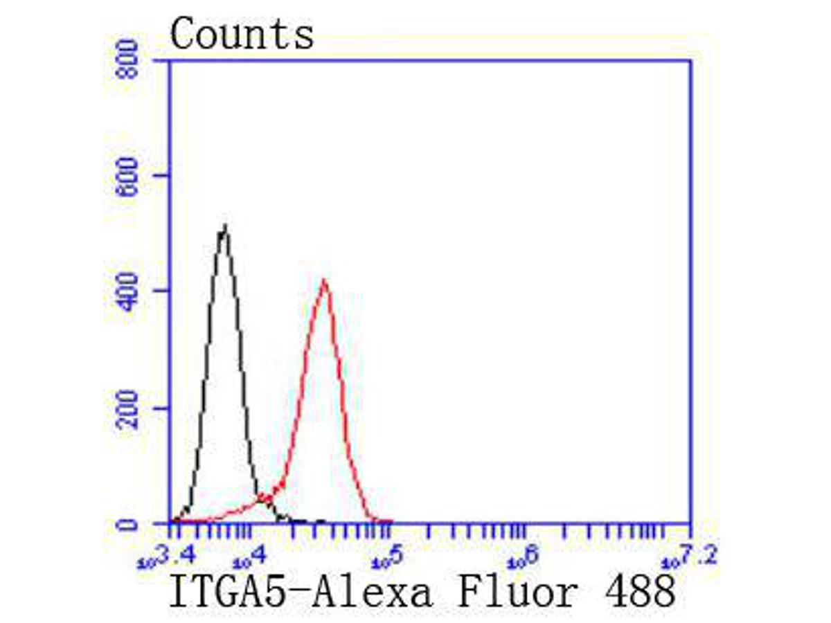 Flow cytometric analysis of Integrin alpha 5 was done on Jurkat cells. The cells were fixed, permeabilized and stained with the primary antibody (ET1701-58, 1/50) (red). After incubation of the primary antibody at room temperature for an hour, the cells were stained with a Alexa Fluor 488-conjugated Goat anti-Rabbit IgG Secondary antibody at 1/1000 dilution for 30 minutes.Unlabelled sample was used as a control (cells without incubation with primary antibody; black).