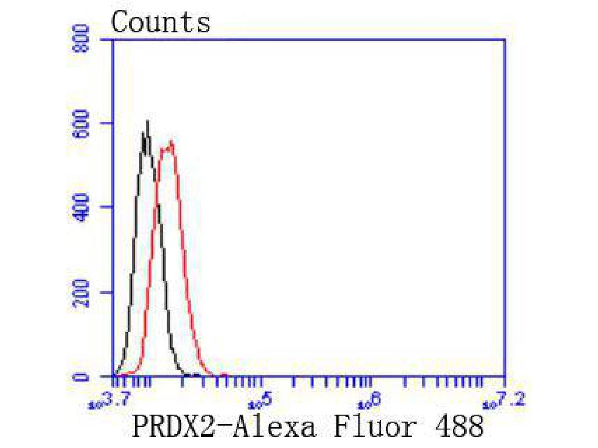 Flow cytometric analysis of Hela cells with Peroxiredoxin 2 antibody at 1/50 dilution (red) compared with an unlabelled control (cells without incubation with primary antibody; black). Alexa Fluor 488-conjugated goat anti rabbit IgG was used as the secondary antibody.