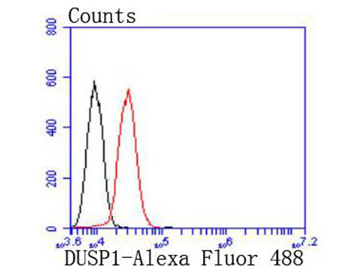 Flow cytometric analysis of DUSP1 was done on HepG2 cells. The cells were fixed, permeabilized and stained with the primary antibody (ET1701-82, 1/50) (red). After incubation of the primary antibody at room temperature for an hour, the cells were stained with a Alexa Fluor 488-conjugated Goat anti-Rabbit IgG Secondary antibody at 1/1000 dilution for 30 minutes.Unlabelled sample was used as a control (cells without incubation with primary antibody; black).