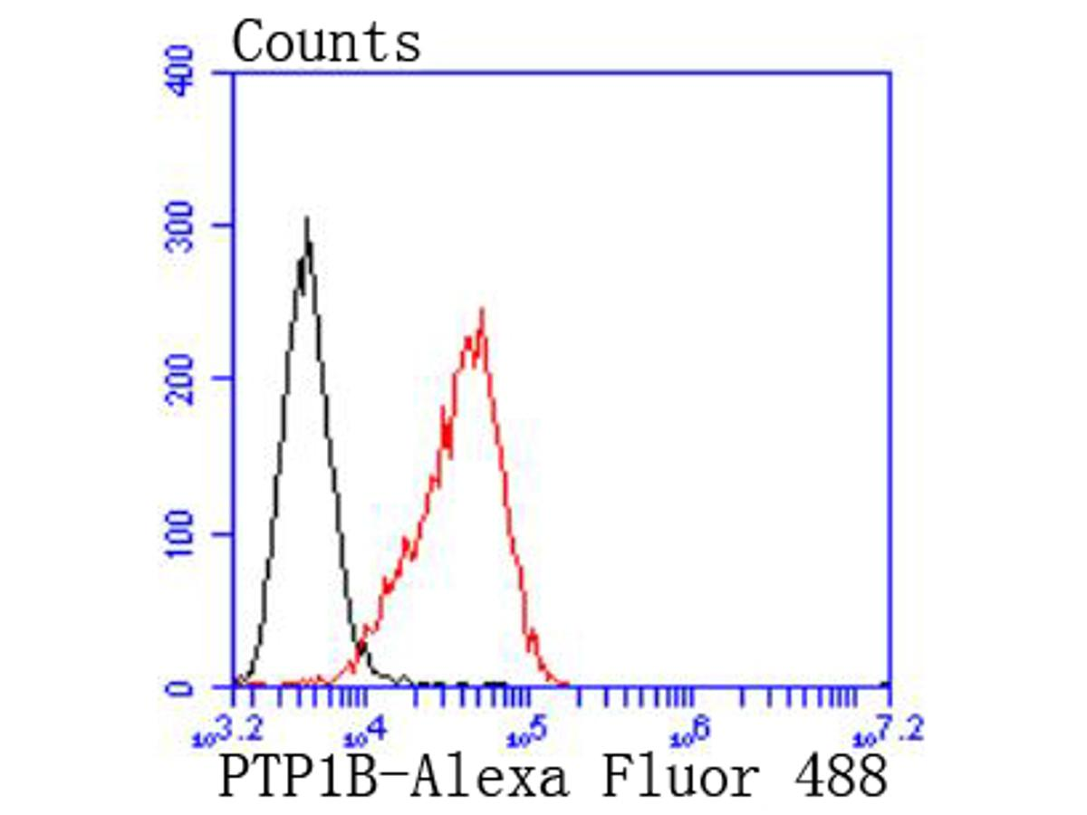 Flow cytometric analysis of Raji cells with PTP1B antibody at 1/50 dilution (red) compared with an unlabelled control (cells without incubation with primary antibody; black). Alexa Fluor 488-conjugated goat anti rabbit IgG was used as the secondary antibody