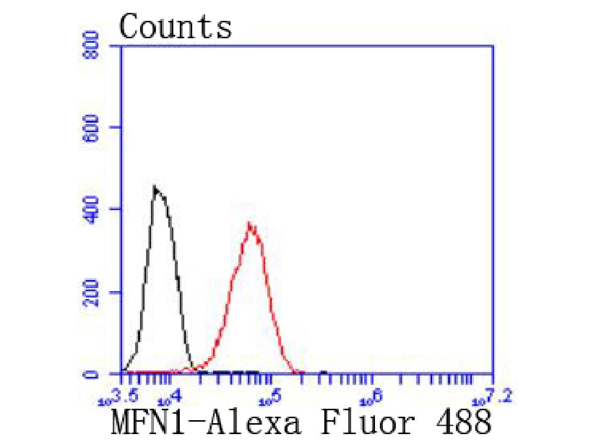 Flow cytometric analysis of 293 cells with Mitofusin 1 antibody at 1/50 dilution (red) compared with an unlabelled control (cells without incubation with primary antibody; black). Alexa Fluor 488-conjugated goat anti rabbit IgG was used as the secondary antibody