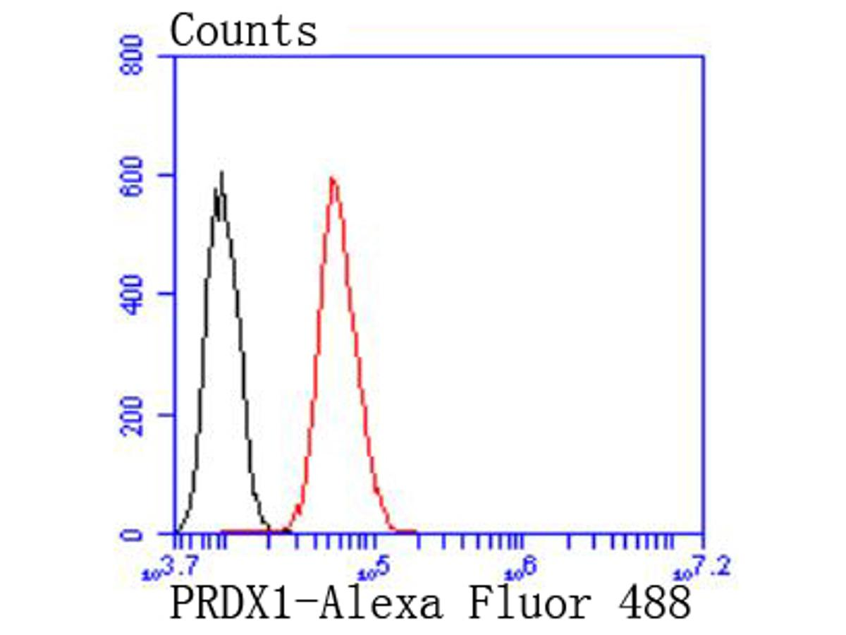 Flow cytometric analysis of Peroxiredoxin 1 was done on Hela cells. The cells were fixed, permeabilized and stained with the primary antibody (ET1702-08, 1/50) (red). After incubation of the primary antibody at room temperature for an hour, the cells were stained with a Alexa Fluor 488-conjugated Goat anti-Rabbit IgG Secondary antibody at 1/1000 dilution for 30 minutes.Unlabelled sample was used as a control (cells without incubation with primary antibody; black).