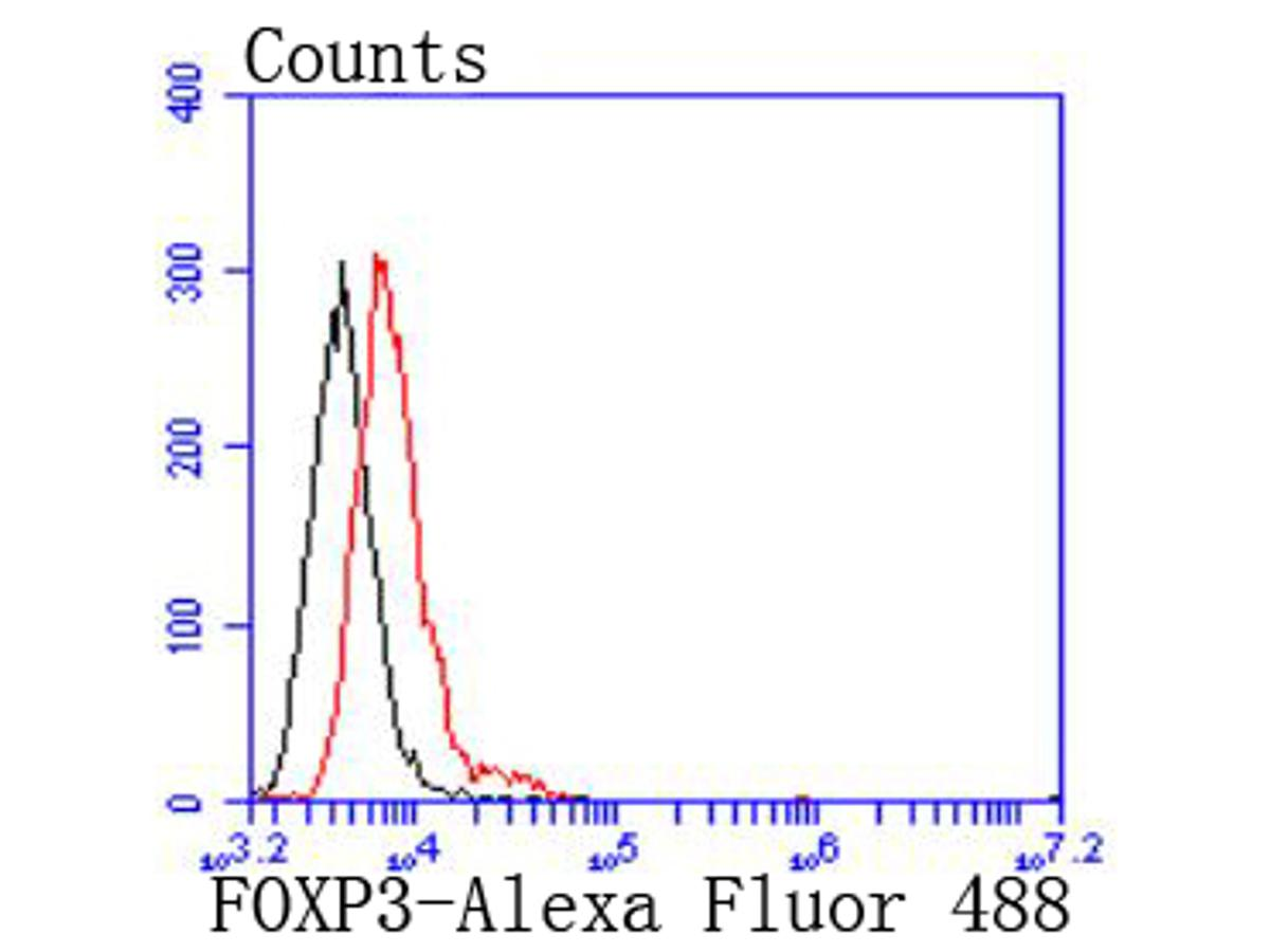 Flow cytometric analysis of Raji cells with FOXP3 antibody at 1/50 dilution (red) compared with an unlabelled control (cells without incubation with primary antibody; black). Alexa Fluor 488-conjugated goat anti rabbit IgG was used as the secondary antibody.