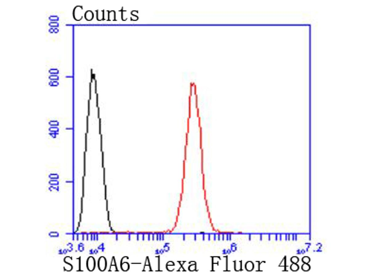 Flow cytometric analysis of S100 alpha 6 was done on SH-SY5Y cells. The cells were fixed, permeabilized and stained with the primary antibody (ET1702-28, 1/50) (red). After incubation of the primary antibody at room temperature for an hour, the cells were stained with a Alexa Fluor 488-conjugated Goat anti-Rabbit IgG Secondary antibody at 1/1000 dilution for 30 minutes.Unlabelled sample was used as a control (cells without incubation with primary antibody; black).