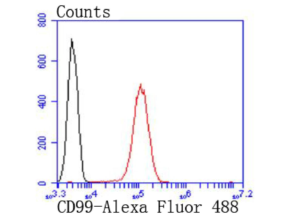 Flow cytometric analysis of Jurkat cells with CD99 antibody at 1/50 dilution (red) compared with an unlabelled control (cells without incubation with primary antibody; black). Alexa Fluor 488-conjugated goat anti rabbit IgG was used as the secondary antibody.