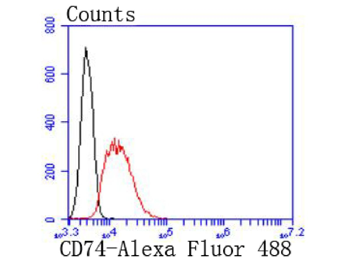 Flow cytometric analysis of Jurkat cells with CD74 antibody at 1/50 dilution (red) compared with an unlabelled control (cells without incubation with primary antibody; black). Alexa Fluor 488-conjugated goat anti rabbit IgG was used as the secondary antibody.