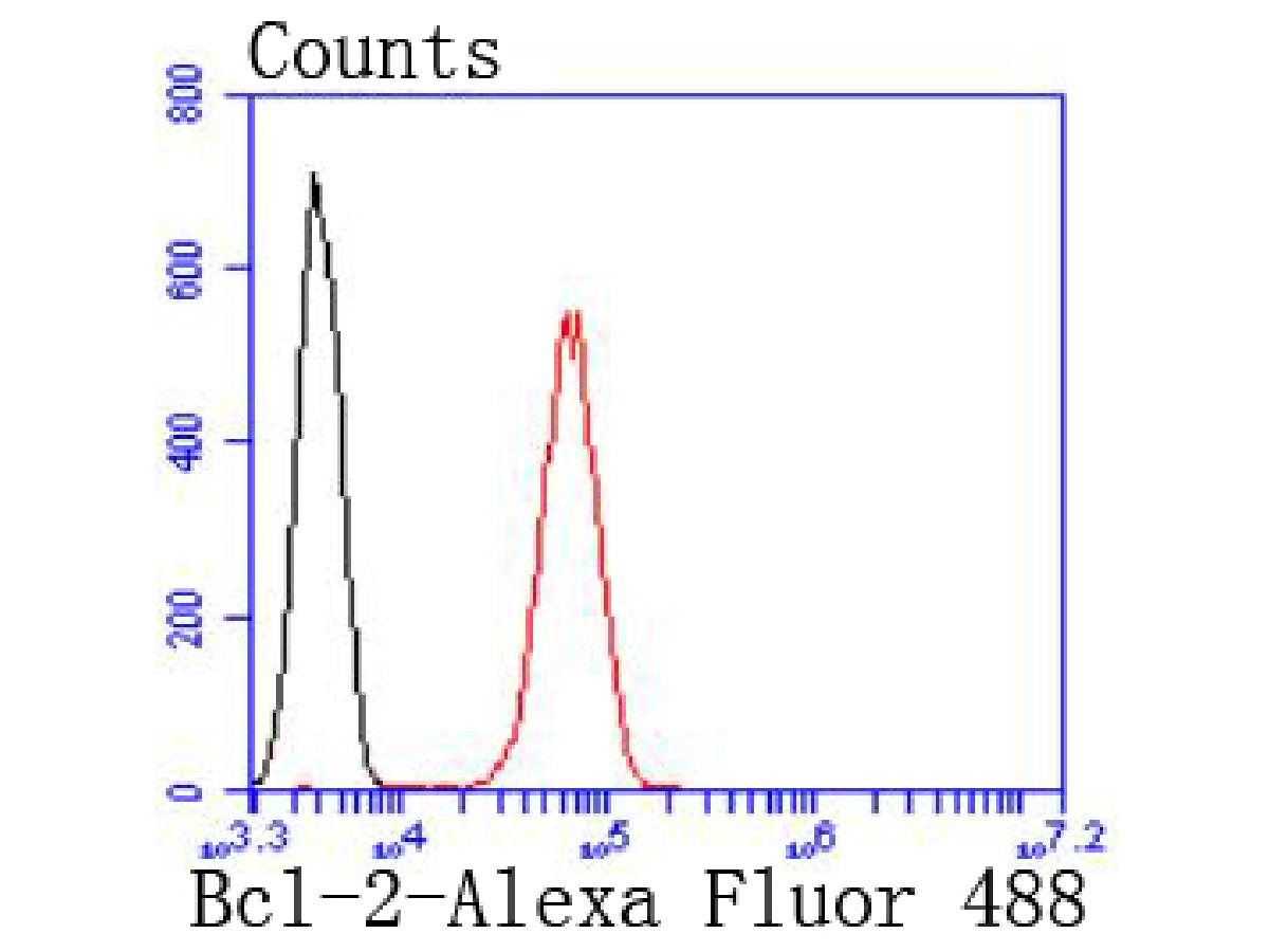 Flow cytometric analysis of Bcl-2 was done on Jurkat cells. The cells were fixed, permeabilized and stained with the primary antibody (ET1702-53, 1/50) (red). After incubation of the primary antibody at room temperature for an hour, the cells were stained with a Alexa Fluor 488-conjugated Goat anti-Rabbit IgG Secondary antibody at 1/1000 dilution for 30 minutes.Unlabelled sample was used as a control (cells without incubation with primary antibody; black).