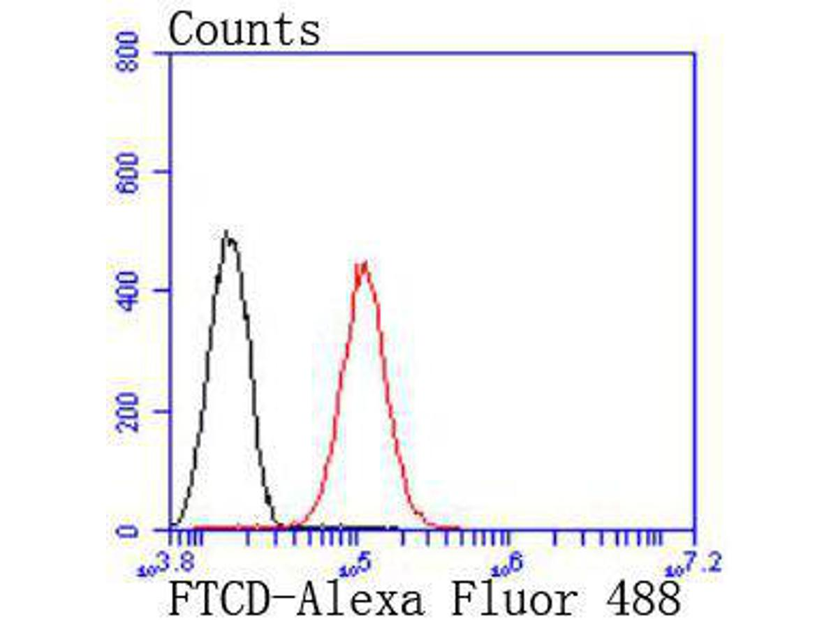 Flow cytometric analysis of HepG2 cells with 58K Golgi protein antibody at 1/50 dilution (red) compared with an unlabelled control (cells without incubation with primary antibody; black). Alexa Fluor 488-conjugated goat anti rabbit IgG was used as the secondary antibody