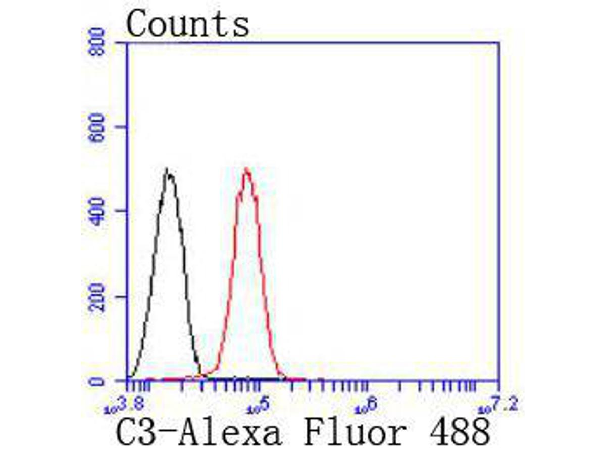 Flow cytometric analysis of C3 was done on HepG2 cells. The cells were fixed, permeabilized and stained with the primary antibody (ET1702-99, 1/50) (red). After incubation of the primary antibody at room temperature for an hour, the cells were stained with a Alexa Fluor 488-conjugated Goat anti-Rabbit IgG Secondary antibody at 1/1000 dilution for 30 minutes.Unlabelled sample was used as a control (cells without incubation with primary antibody; black).