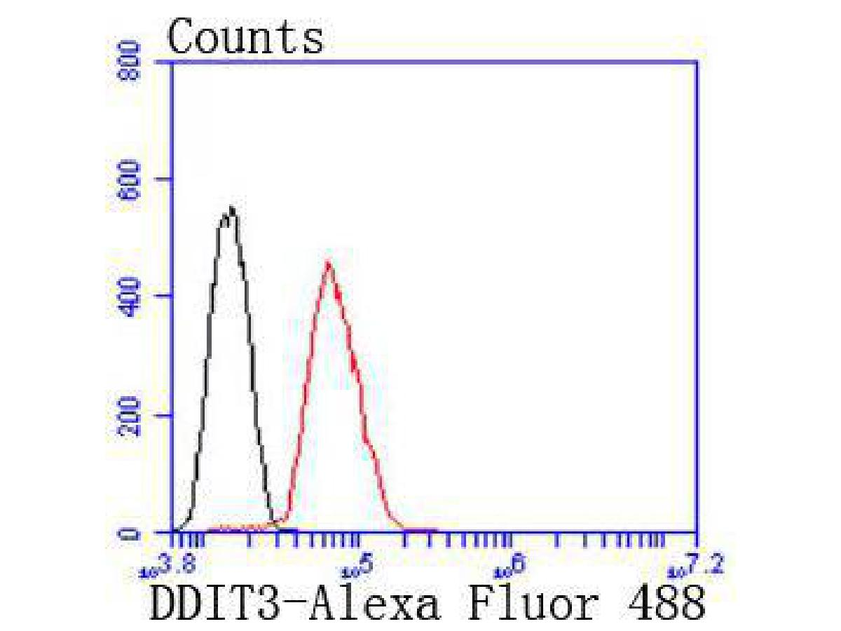 Flow cytometric analysis of DDIT3 was done on Hela cells. The cells were fixed, permeabilized and stained with the primary antibody (ET1703-05, 1/50) (red). After incubation of the primary antibody at room temperature for an hour, the cells were stained with a Alexa Fluor 488-conjugated Goat anti-Rabbit IgG Secondary antibody at 1/1000 dilution for 30 minutes.Unlabelled sample was used as a control (cells without incubation with primary antibody; black).
