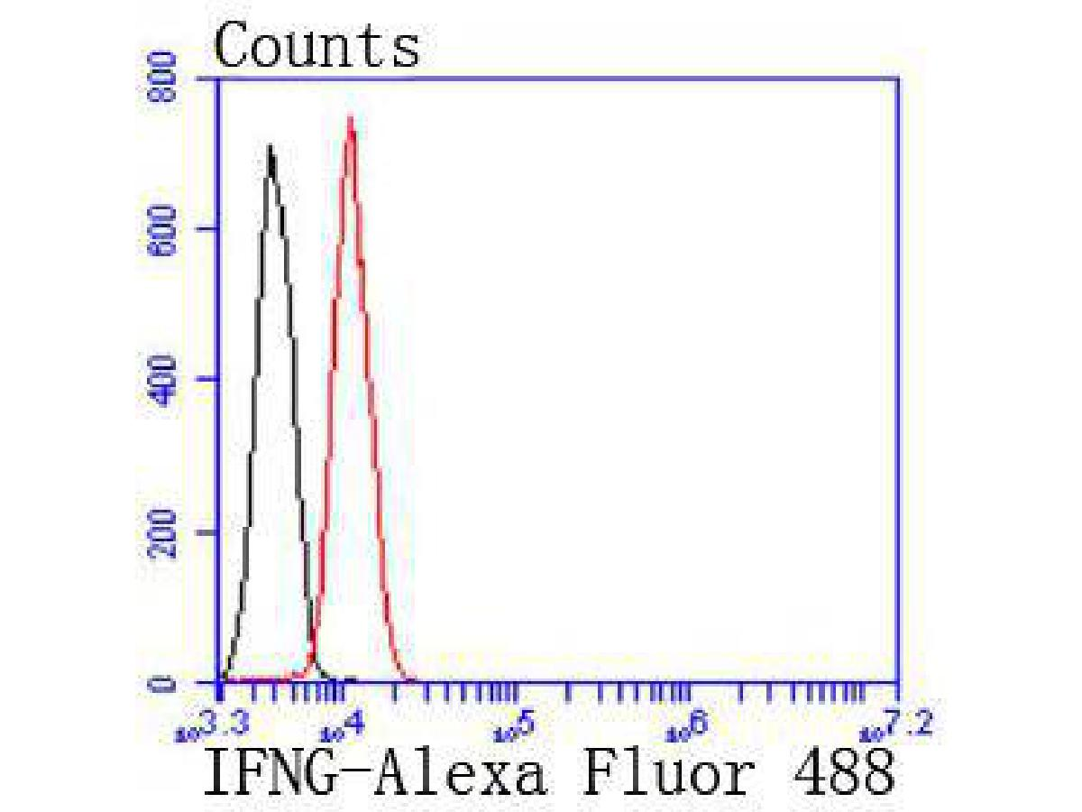 Flow cytometric analysis of Interferon gamma was done on Jurkat cells. The cells were fixed, permeabilized and stained with the primary antibody (ET1703-17, 1/50) (red). After incubation of the primary antibody at room temperature for an hour, the cells were stained with a Alexa Fluor 488-conjugated Goat anti-Rabbit IgG Secondary antibody at 1/1000 dilution for 30 minutes.Unlabelled sample was used as a control (cells without incubation with primary antibody; black).