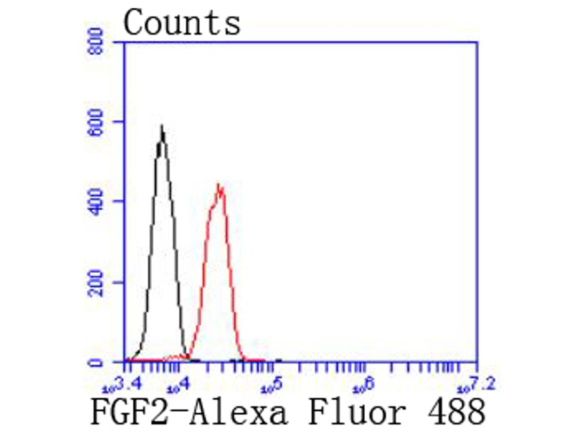 Flow cytometric analysis of Jurkat cells with FGF2 antibody at 1/50 dilution (red) compared with an unlabelled control (cells without incubation with primary antibody; black). Alexa Fluor 488-conjugated goat anti rabbit IgG was used as the secondary antibody.