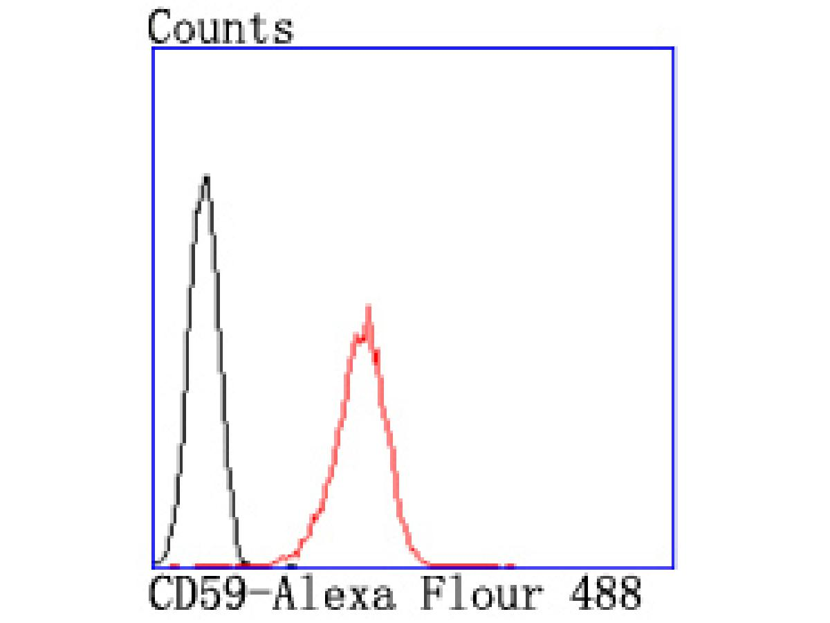 Flow cytometric analysis of NIH-3T3 cells with CD59 antibody at 1/50 dilution (red) compared with an unlabelled control (cells without incubation with primary antibody; black). Alexa Fluor 488-conjugated goat anti rabbit IgG was used as the secondary antibody.
