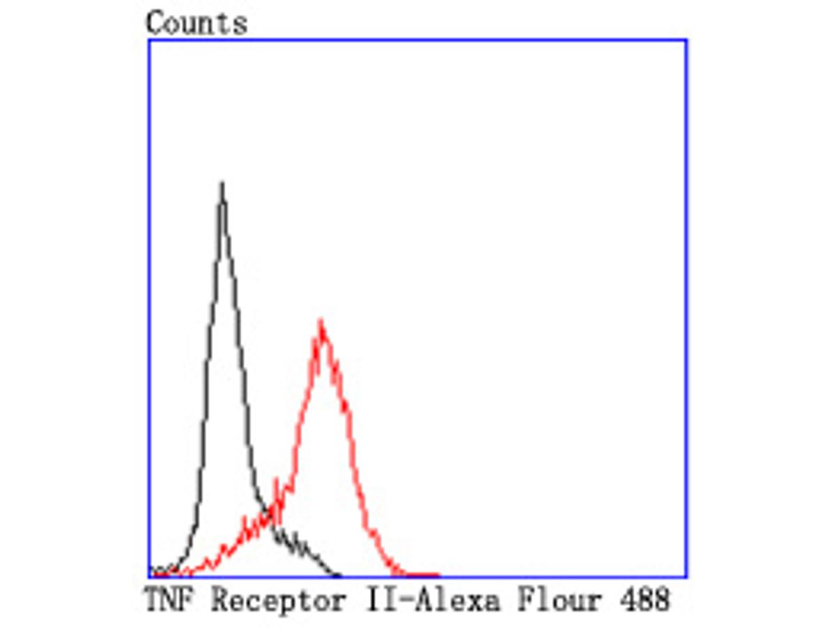 Flow cytometric analysis of HL-60 cells with TNF Receptor II antibody at 1/50 dilution (red) compared with an unlabelled control (cells without incubation with primary antibody; black). Alexa Fluor 488-conjugated goat anti rabbit IgG was used as the secondary antibody.