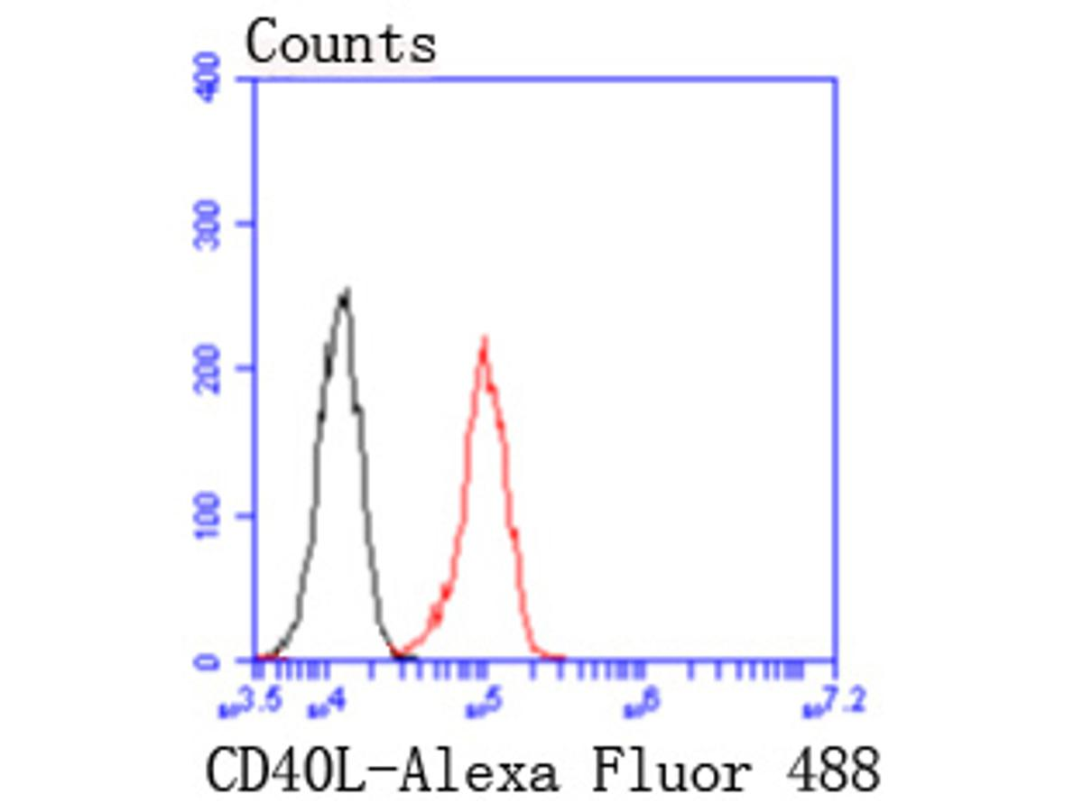 Flow cytometric analysis of THP-1 cells with CD40L antibody at 1/50 dilution (red) compared with an unlabelled control (cells without incubation with primary antibody; black). Alexa Fluor 488-conjugated goat anti rabbit IgG was used as the secondary antibody.