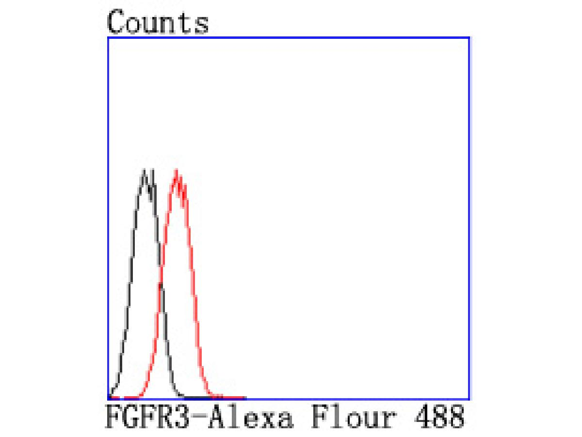 Flow cytometric analysis of FGFR3 was done on A549 cells. The cells were fixed, permeabilized and stained with the primary antibody (ET1703-65, 1/50) (red). After incubation of the primary antibody at room temperature for an hour, the cells were stained with a Alexa Fluor 488-conjugated Goat anti-Rabbit IgG Secondary antibody at 1/1000 dilution for 30 minutes.Unlabelled sample was used as a control (cells without incubation with primary antibody; black).