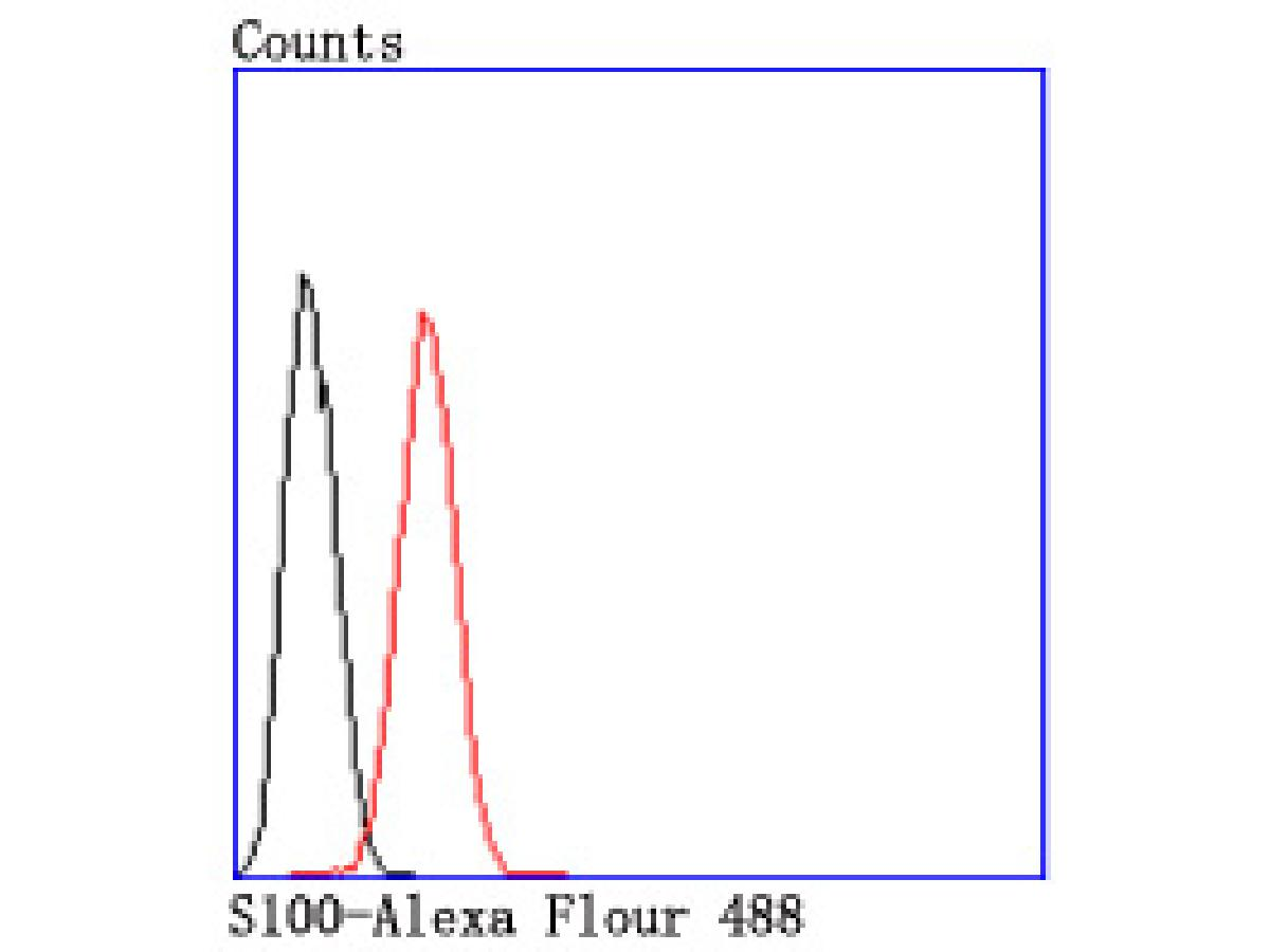 Flow cytometric analysis of SH-SY5Y cells with S100 antibody at 1/50 dilution (red) compared with an unlabelled control (cells without incubation with primary antibody; black). Alexa Fluor 488-conjugated goat anti rabbit IgG was used as the secondary antibody.