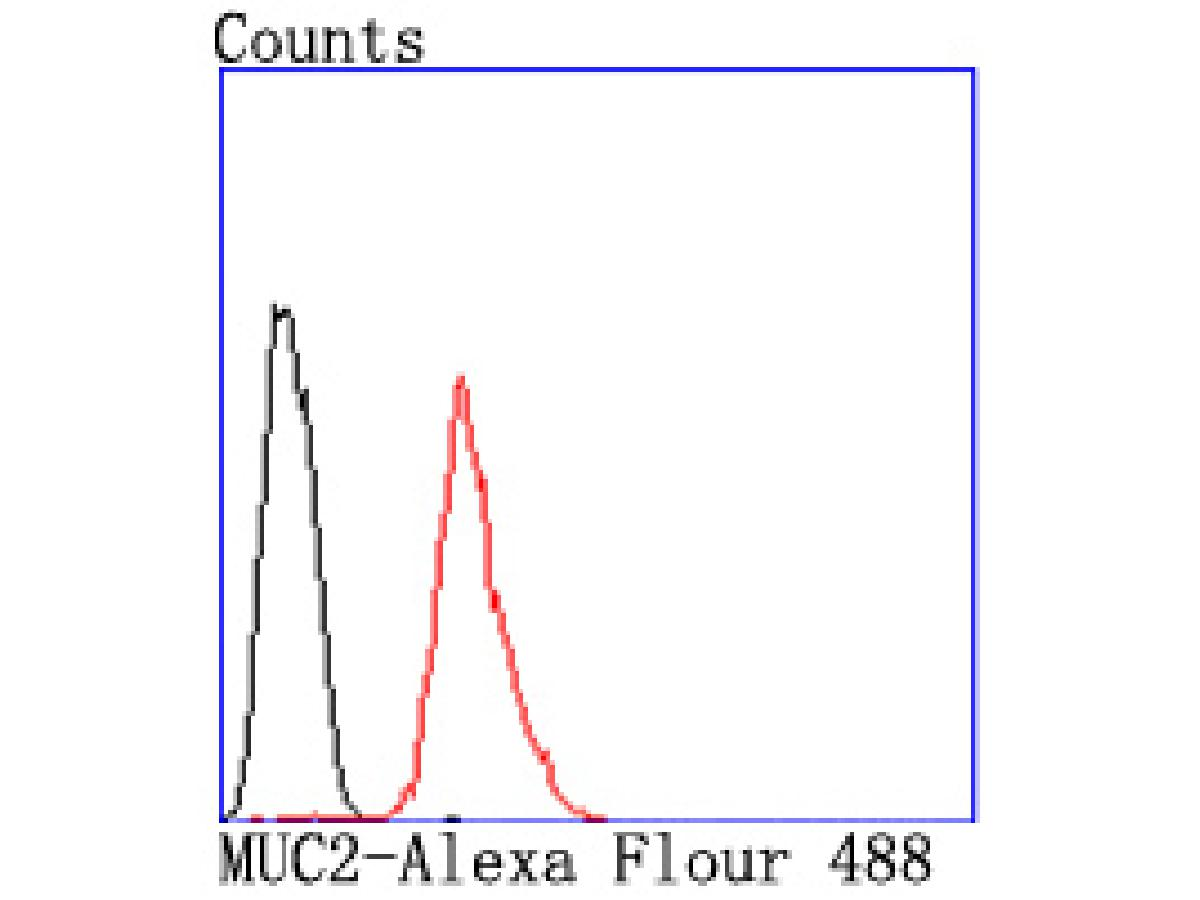 Flow cytometric analysis of Hela cells with MUC2 antibody at 1/50 dilution (red) compared with an unlabelled control (cells without incubation with primary antibody; black). Alexa Fluor 488-conjugated goat anti rabbit IgG was used as the secondary antibody.