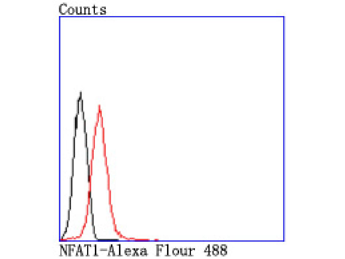 Flow cytometric analysis of Jurkat cells with NFAT1 antibody at 1/50 dilution (red) compared with an unlabelled control (cells without incubation with primary antibody; black). Alexa Fluor 488-conjugated goat anti rabbit IgG was used as the secondary antibody.