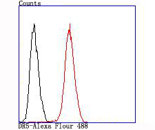 Flow cytometric analysis of SW480 cells with DR5 antibody at 1/100 dilution (red) compared with an unlabelled control (cells without incubation with primary antibody; black).