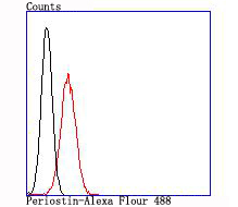 Flow cytometric analysis of 293T cells with Periostin antibody at 1/100 dilution (red) compared with an unlabelled control (cells without incubation with primary antibody; black).