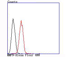 Flow cytometric analysis of MMP9 was done on A431 cells. The cells were fixed, permeabilized and stained with the primary antibody (ET1704-69, 1/50) (red). After incubation of the primary antibody at room temperature for an hour, the cells were stained with a Alexa Fluor 488-conjugated Goat anti-Rabbit IgG Secondary antibody at 1/1000 dilution for 30 minutes.Unlabelled sample was used as a control (cells without incubation with primary antibody; black).