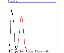 Flow cytometric analysis of PKC epsilon was done on SH-SY5Y cells. The cells were fixed, permeabilized and stained with the primary antibody (ET1704-85, 1/50) (red). After incubation of the primary antibody at room temperature for an hour, the cells were stained with a Alexa Fluor 488-conjugated Goat anti-Rabbit IgG Secondary antibody at 1/1000 dilution for 30 minutes.Unlabelled sample was used as a control (cells without incubation with primary antibody; black).
