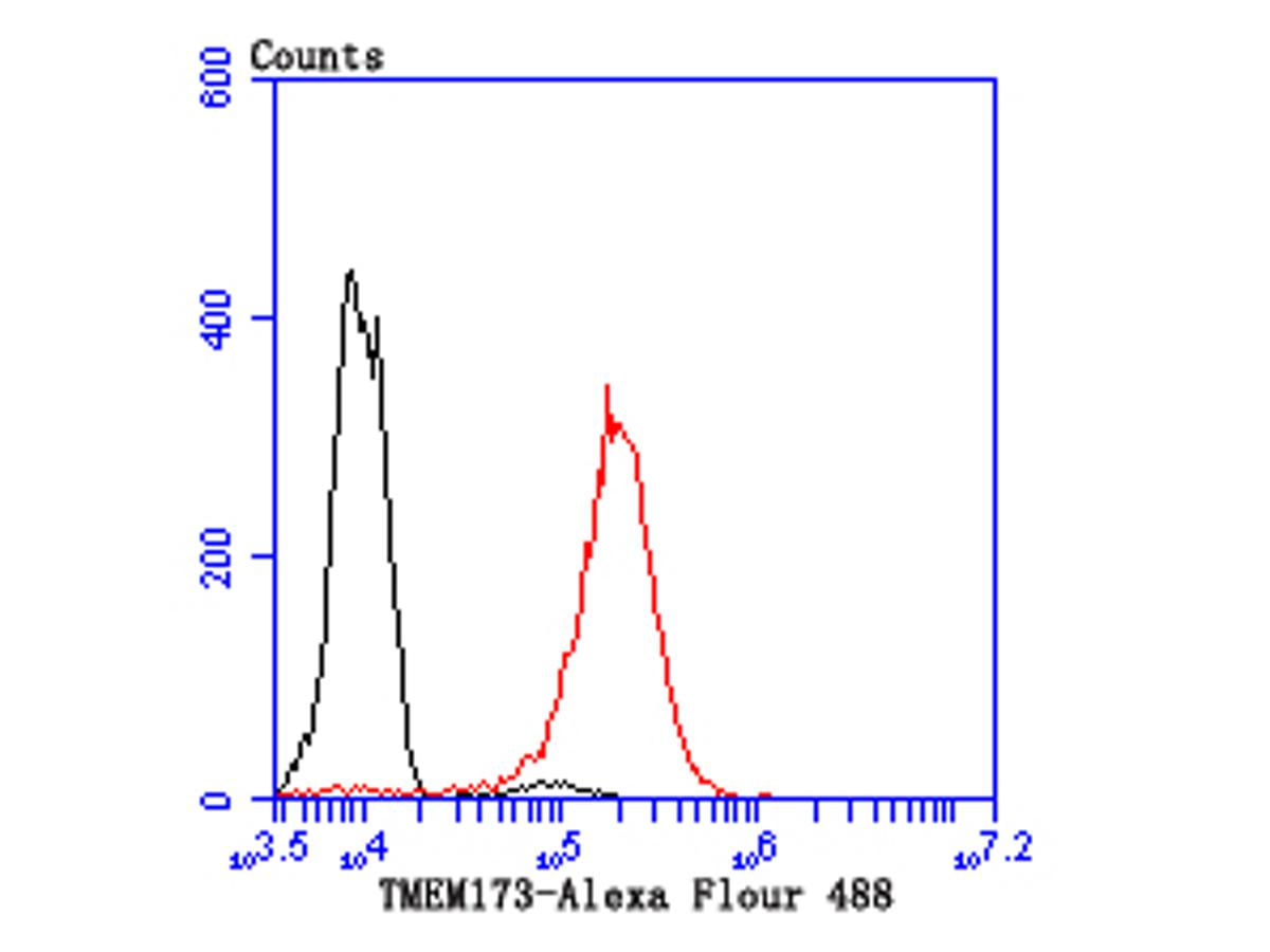 Flow cytometric analysis of THP-1 cells with TMEM173 antibody at 1/100 dilution (red) compared with an unlabelled control (cells without incubation with primary antibody; black).